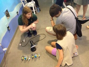 Building and testing solar-powered robots.